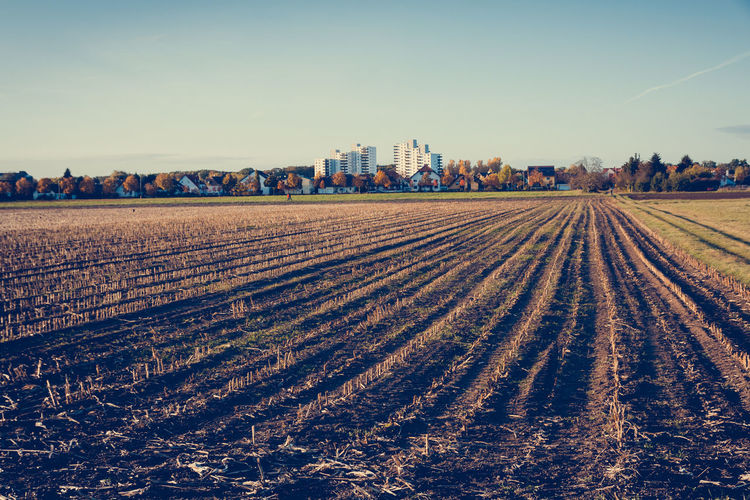 Stubblefield Agriculture Building Exterior Clear Sky Copy Space Cultivated Land Farm Field Germany Growth Landscape Nature Rural Scene Sky Stubble Field Stubblefield Tranquil Scene Tranquility