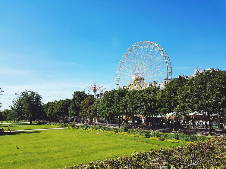 Sky Tree Ferris Wheel Day Nature Outdoors Paris, France  Paris City Beauty In Nature Scenics Scenic Scenic Landscapes Scenery Cloud - Sky Grass