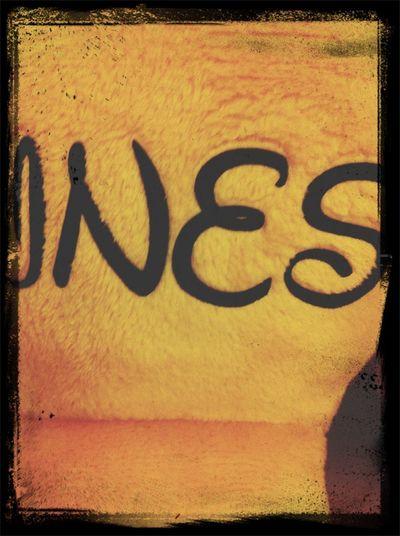Ines tag
