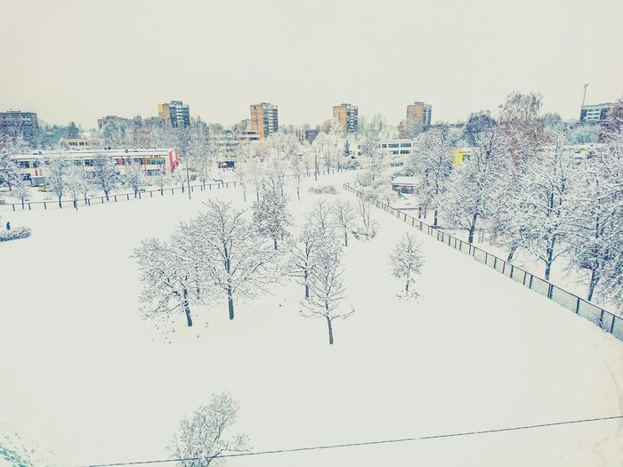 Snow Building Early Snowfall Snow ❄ Snowfall Winter Is Coming Kids Happy Good Mood Nature Beauty In Nature Wanderlife View From My Window Sony Xperia Photography. First Snow Cloud - Sky No People Happy Winter Angelina B