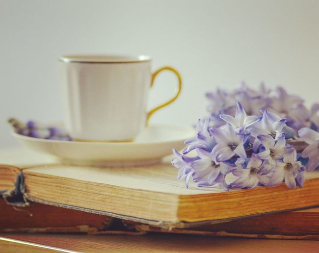 Tea and book time The Still Life Photographer - 2018 EyeEm Awards Flower Flower Head Studio Shot Ribbon - Sewing Item Table Coffee - Drink Still Life Close-up Tea Cup Tea Tea - Hot Drink Afternoon Tea Green Tea Mint Tea Black Tea Herbal Tea