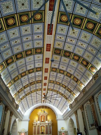 Ceiling Ceiling Design Centuries Cathedral Churches Sts. Peter & Paul Metropolitan Cathedral