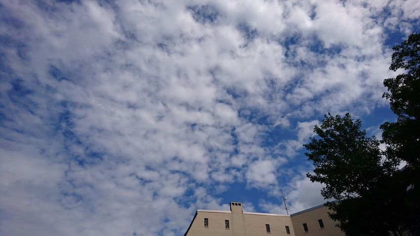 Clouds over Eppendorf. Hamburg Germany Hh Hamburg Meine Perle Eppendorf Eppendorfer Baum Clouds Clouds And Sky Blue Sky Nature Urban Nature Simplicity Architecture Cloud - Sky Low Angle View Tree Sky Building Exterior Built Structure