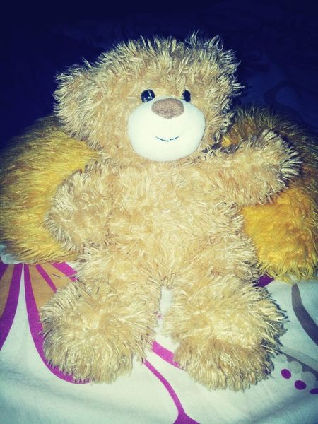 My ted
