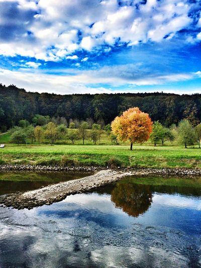 Autumn Donau