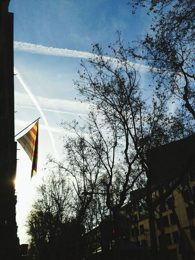 Good Morning Ramblas! Walking Around Hello World Catalunya La Rambla, Barcelona Barcelona, Spain Catalunyagrafias Being A Tourist Catalunyaexperience Catalunyalove Flags In The Wind  La Rambla Colors Check This Out Taking Photos Barcelona España