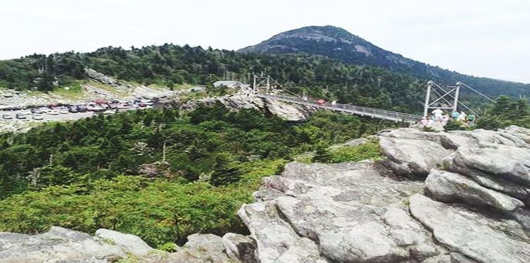 Grandfather Mountain Tree Mountain Mountain Peak Rock - Object Adventure Summer Sky Landscape Mountain Range