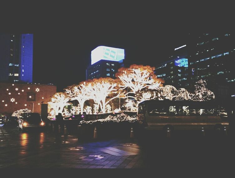 LOTTE HOTEL Illumination Trees Seoul_korea