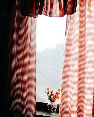 Orange Flower Vase Amidst Curtain On Window