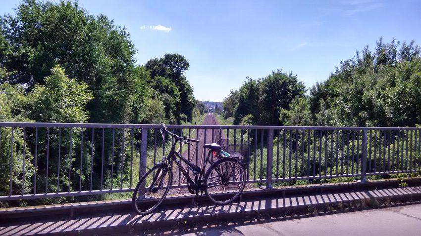 Tree Railing Outdoors Bicycle Bridge - Man Made Structure Sky Nature Rural Scene Cloud - Sky Landscape Summer