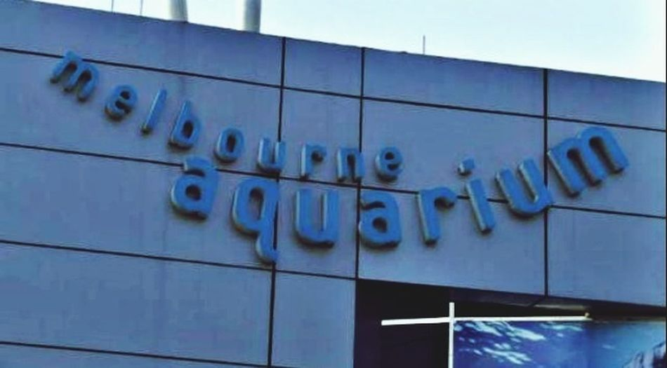 Australia Aquarium Melbourne