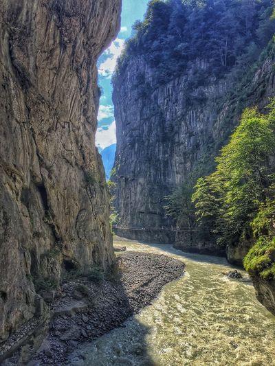 Alps Alpine River Gorge Crevasse Trees Cliffs Walkway Tourist Precarious Bridge Shade Mountain