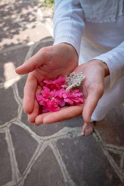 Spirituality Yoga Beauty In Nature Beauty In Nature Close-up Day Flower Flower Head Flowering Plant Freshness Gentle Giving Hand Hands Cupped Holding Human Body Part Human Hand Lifestyles Nature One Person Outdoors Pink Color Plant Real People Women