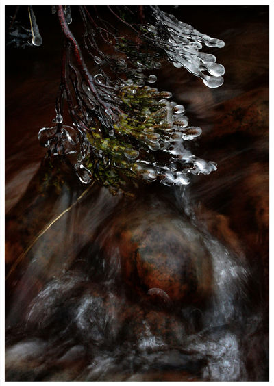 Motion No People Close-up Outdoors Nature Water Beauty In Nature Cold Temperature River Melting Snow Plants