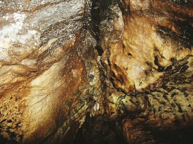 Limestone Cave Textured  Full Frame Backgrounds Nature Close-up Stalactite Cave Outdoors Limestonephotos Abstract Limestone Rocks Day Rough Lifestyles Cave Wall Bengkulu Indonesia Bark Tree Rock Formation Beauty In Nature Physical Geography Geology Cave Textured  Stalactite  Rock - Object No People Pattern Tree Trunk Rock Face