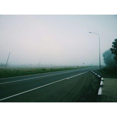 моеутро туман Vscocam