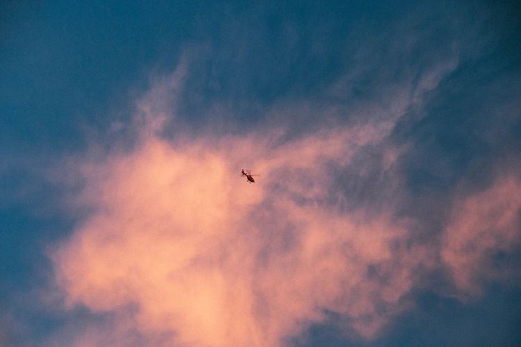 Cloud - Sky Sky Low Angle View Flying Transportation Air Vehicle Mode Of Transportation No People Airplane Nature Mid-air Beauty In Nature Sunset Bird on the move Vertebrate Animal Outdoors Tranquility Animal Themes Plane Chopper Helicopter Emergency Fast