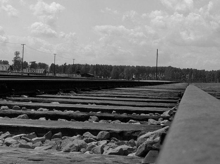 Rail Tracks. Auchwitz (2006). 563 Auchwitz Warsaw Poland History Through The Lens  History WWII Choatephoto Choatgrapy Streetphotography No People Every Picture Tells A Story EyeEmBestPics IPhone Photography Blackandwhite Tranquil Scene Taking Photos Close Up Railroad Track Railway Track Unedited Photo Original Photography Quiet Places Quiet Moments EyeEm EyeEm Gallery The Street Photographer - 2017 EyeEm Awards The Street Photographer - 2017 EyeEm Awards EyeEm Selects EyeEm Selects The Week On EyeEm