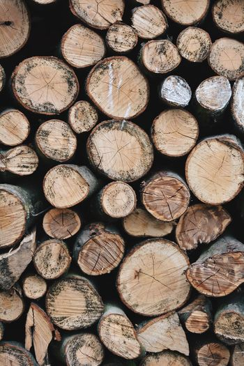 Are we out of the woods yet? First Eyeem Photo Brown Log Full Frame Firewood Timber Lumber Industry Backgrounds Forest Tree Stack Nature Wood - Material Pattern First Eyeem Photo