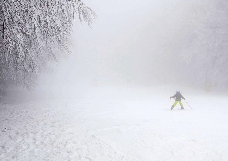Person on snow covered landscape