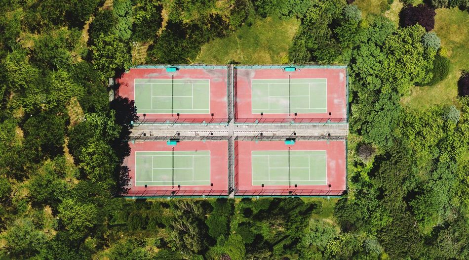 tennis court Tenniscourt Tennis Court Tennis Player Forrest Tree