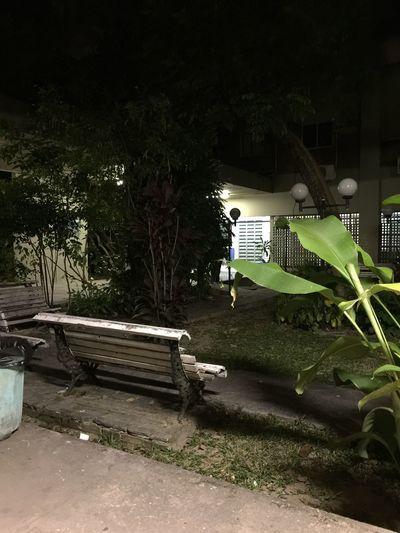 Não está abandonado, é apenas sexta à noite na Universidade // Its not abandoned, its Just Friday Night at University. Quiet Places Park Bench Tranquility