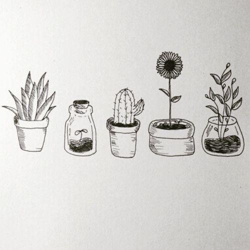 Planties 🌾🌿🌵🌻🌱 Doodle Finalsweek Plants