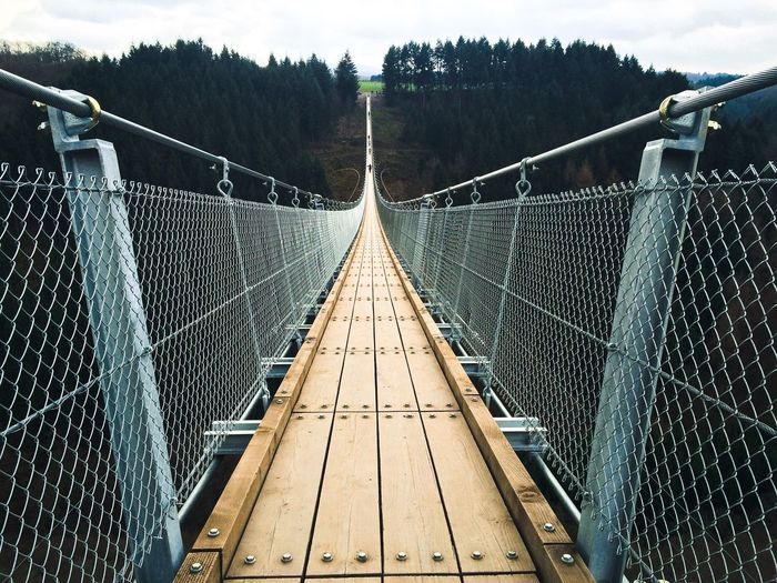 Bridge Geierley Germany Rope Bridge