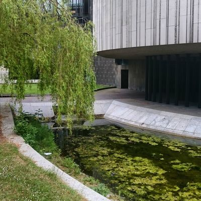 Built Structure Water Growth No People Green Color Outdoors Reflection Building Exterior Beauty In Nature Day Brutal_architecture Brutalism Concrete Newcastle University