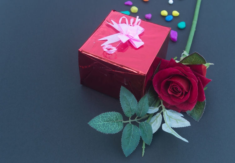 High angle view of red rose in box