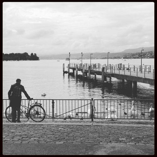 """A man, his bike & swan lake"" Streetphotography Enjoying Life Blackandwhite Monochrome"