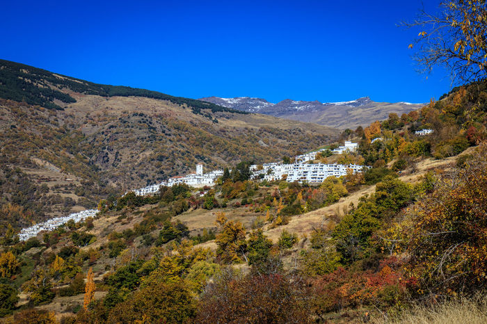 Alpujarra Granada Architecture Beauty In Nature Blue Clear Sky Day Landscape Mountain Mountain Range Nature No People Outdoors Plant Scenics Sky Tranquil Scene Tranquility Tree