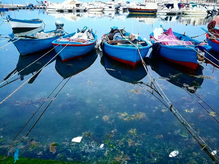 Puglia Bisceglie Discovering Seaport Blue Sky Reflection Outdoors Sinking Feeling
