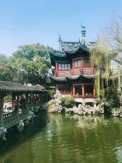 Temple - Building Trees Day is Sun Light Sun ☀ Corridor Pond Chinese People Foreigner Traveller