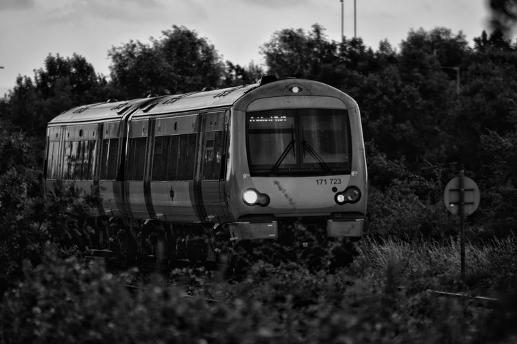 Train Country Train Evening Train Transportation Mode Of Transport Rail Transportation Locomotive Railroad Track Public Transportation Outdoors No People Sky Nature Rail Monochrome Black And White Grass Tree Twilight Railway On The Move