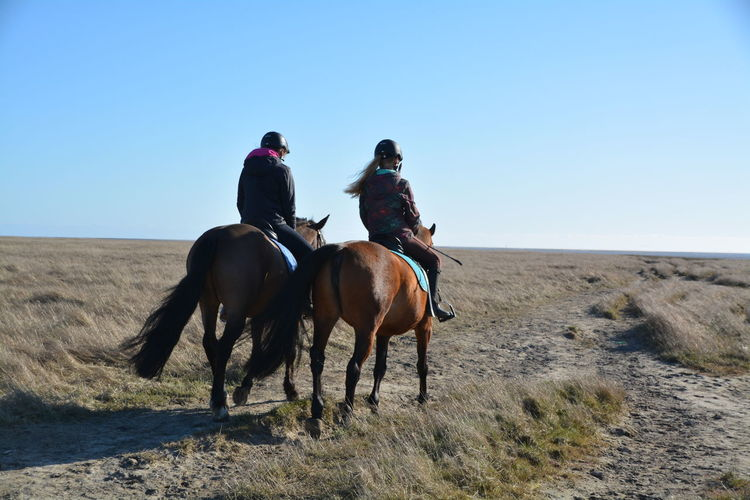 Rear view of friends riding horses on arid landscape against clear blue sky