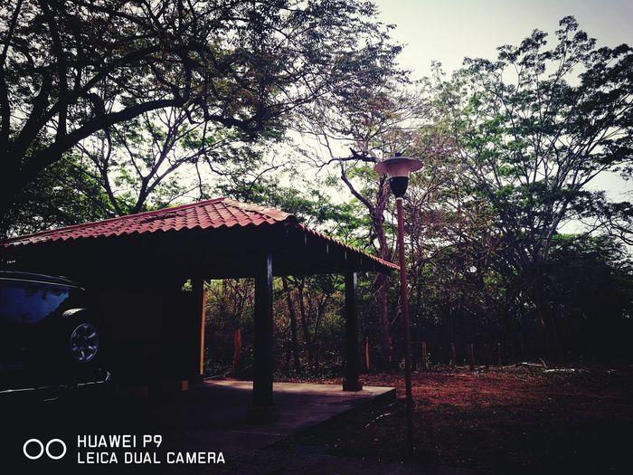 Costa Rica Y Su Naturaleza HuaweiP9