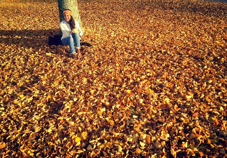 Lovelovelove Fall