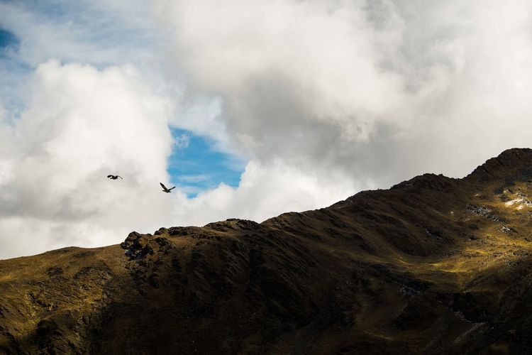 Flock of birds flying over mountain against sky