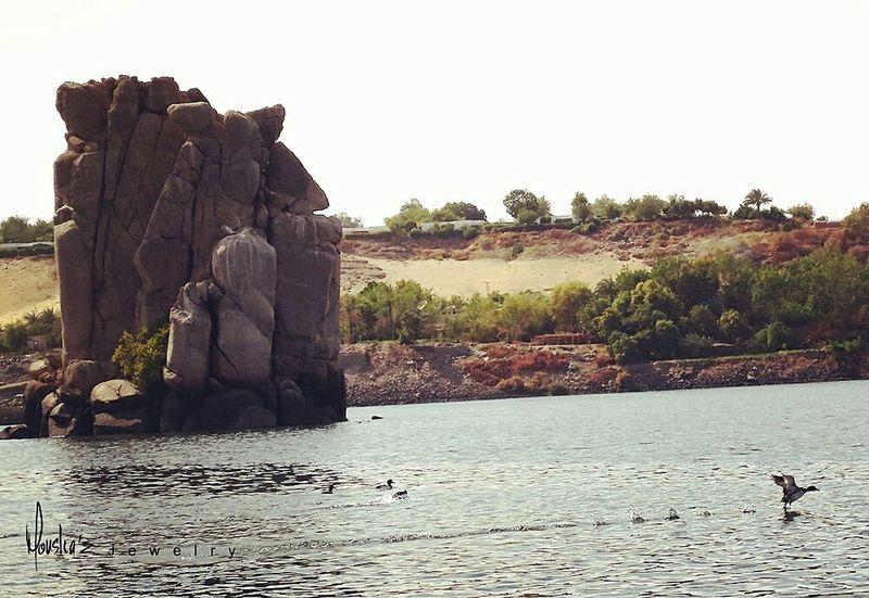 Upperegypt Graniterock Wildducks Wild Ducks Birds Landscape Aswan Egypt