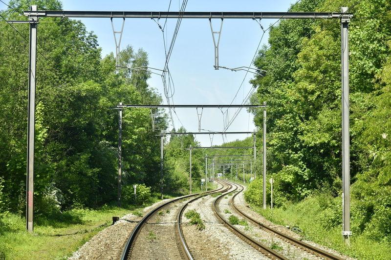 Railroad tracks amidst trees against clear sky