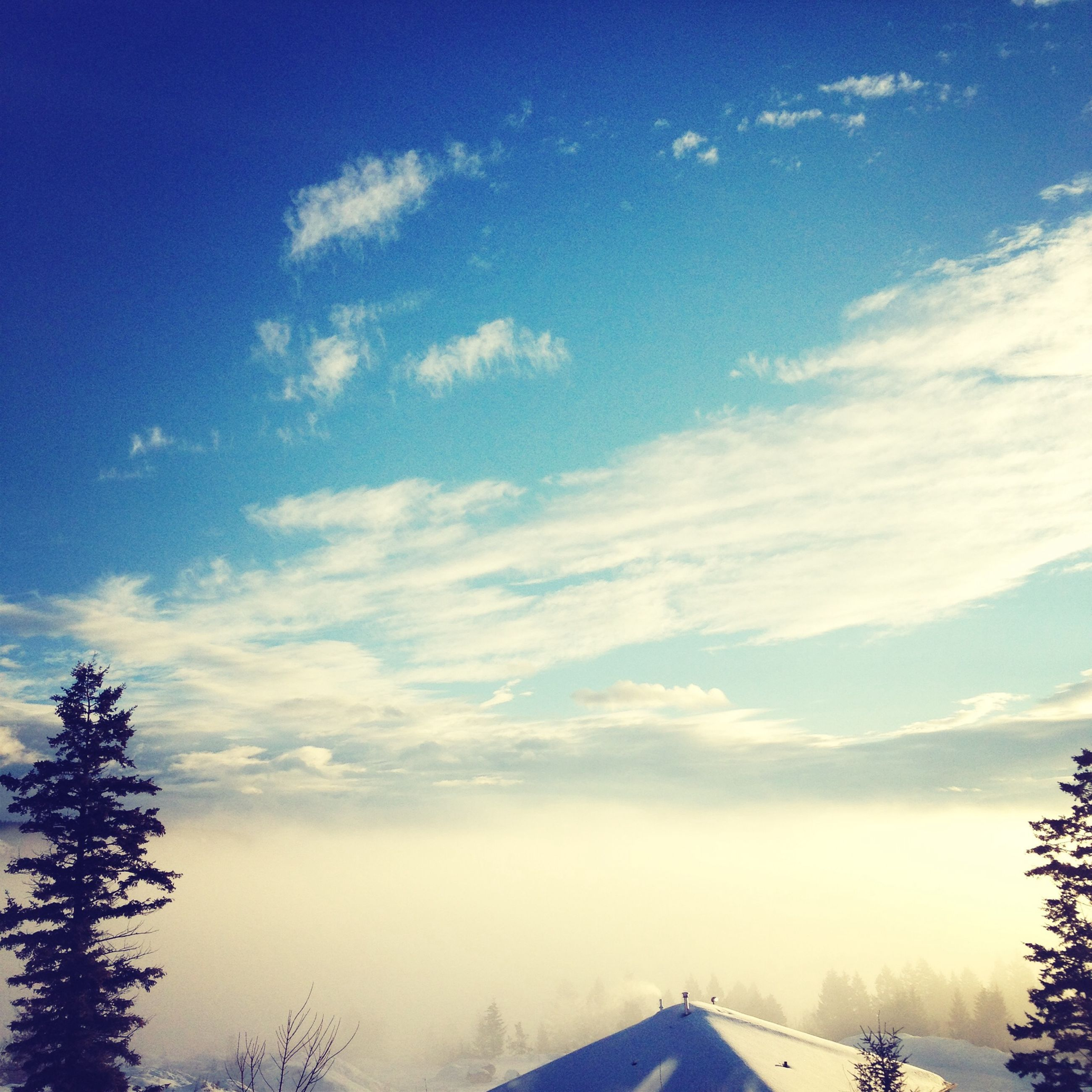 sky, snow, winter, cold temperature, tranquil scene, tranquility, beauty in nature, scenics, landscape, cloud - sky, nature, weather, tree, blue, season, cloud, field, covering, non-urban scene, no people