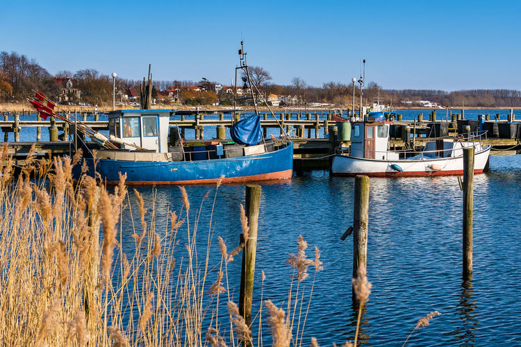 View to the port in Rerik, Germany. Dolphins Harbor Relaxing Rerik Salzhaff Architecture Blue Boats Building Exterior Built Structure Clear Sky Day Fishing Boat Nature No People Outdoors Reeds Ships Sky Tourism Travel Destinations Vacation Water