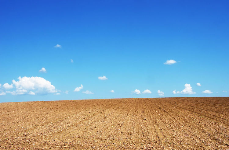 ploughed field under blue sky Agriculture Cloud - Sky Environment Horizon Horizon Over Land Land Landscape Nature Plough Rural Scene Scenics - Nature Sky Tranquil Scene Tranquility