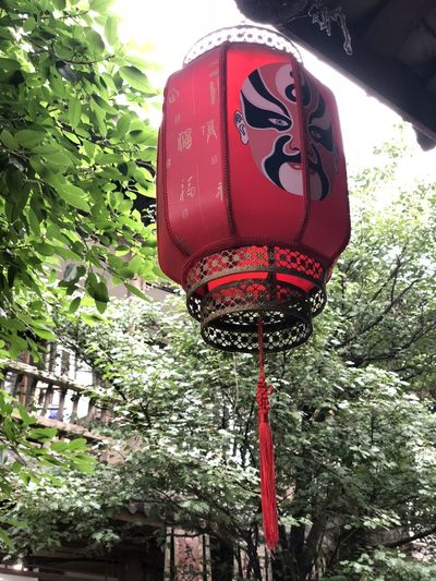 Architecture Built Structure Close-up Communication Day Green Color Growth Hanging Lantern Lighting Equipment Low Angle View Nature No People Outdoors Plant Red Road Sign Sign Text Tree
