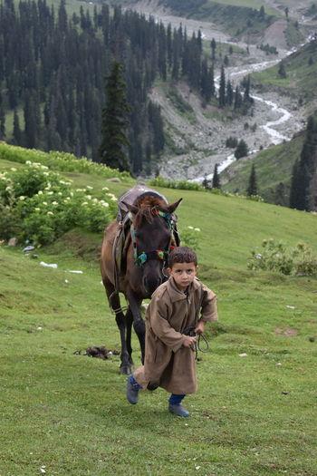 A little cute kashmiri kid about to ride a horse . so beautiful