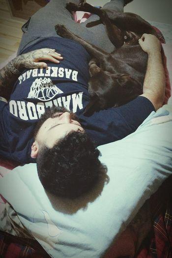 Dog Pet Labrador Baloo Gordo Rulos Sunday Rainy Day Animal Themes Casual Clothing Love Beardedman Tattoos