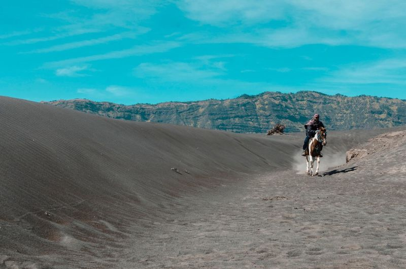 Horseman riding his horse . Amazing View EyeEm Selects Horse Horseman Travel Photography Bromo Tengger Semeru National Park Sand Ride Riding Transportation Activity Mountain Land Real People Leisure Activity Environment Lifestyles Sky Adult One Person Nature Mode Of Transportation Landscape Outdoors Sport Day Full Length