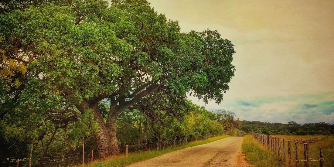 ...around Texas 071 NEM Landscapes AMPt_community NEM Painterly NEM GoodKarma