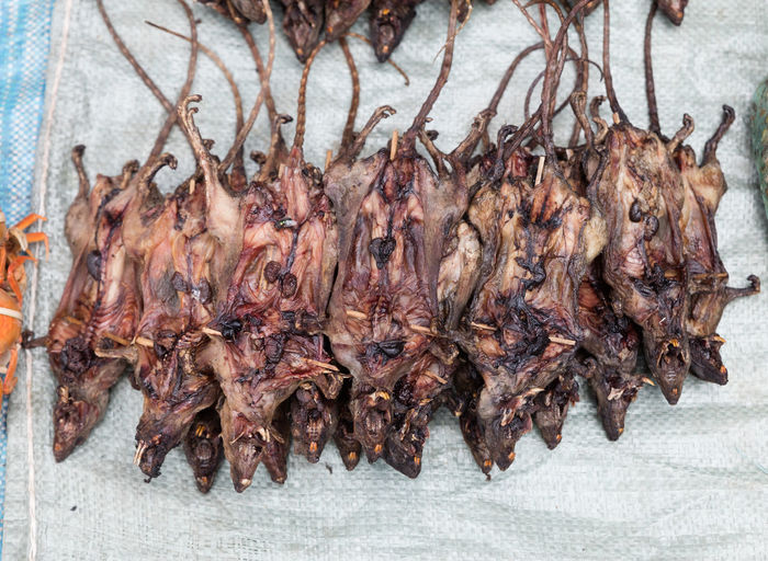 Close-up of roasted rats